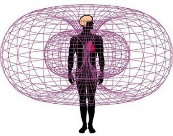 naturo champs magnétiques0